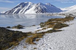 Paysage des Fjords de l'Est, Islande