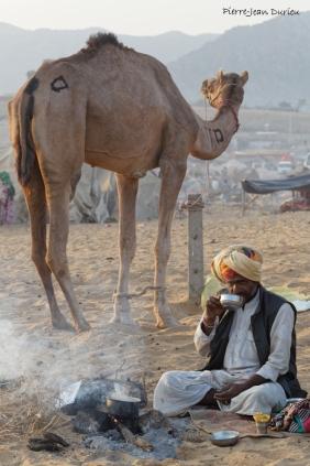 Petit déjeuner avec son chameau, Rajasthan, Octobre 2017